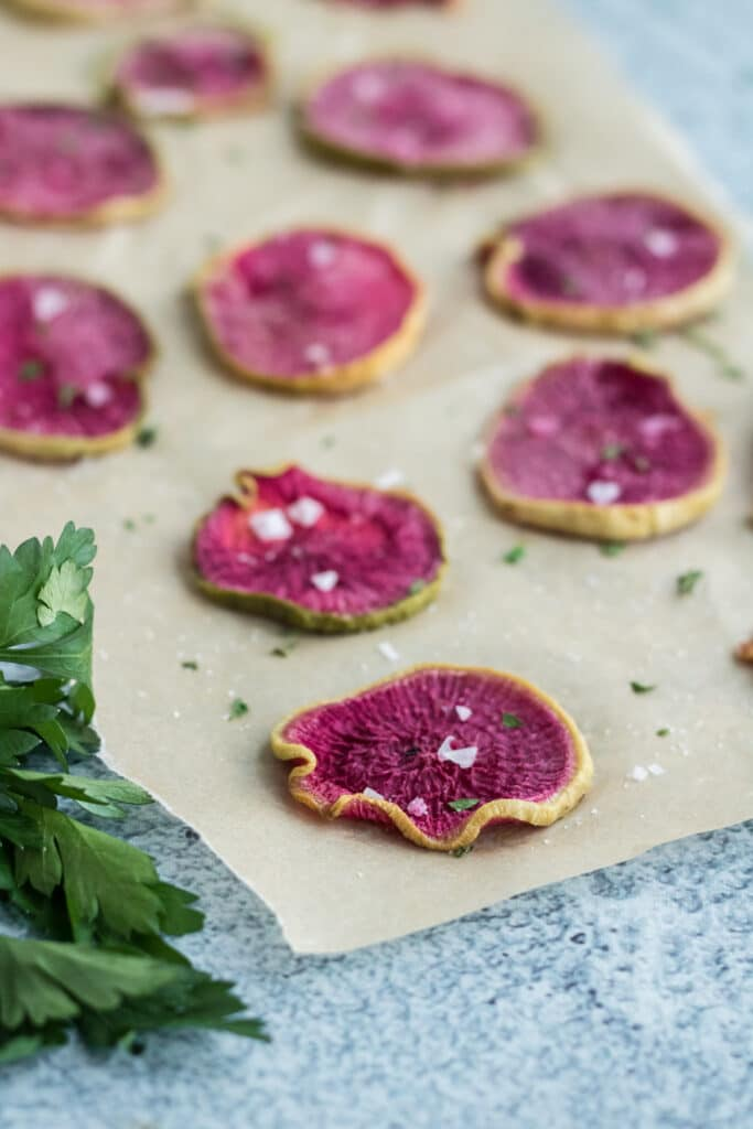 Roasted watermelon radish chips fresh out of the oven on unbleached parchment paper