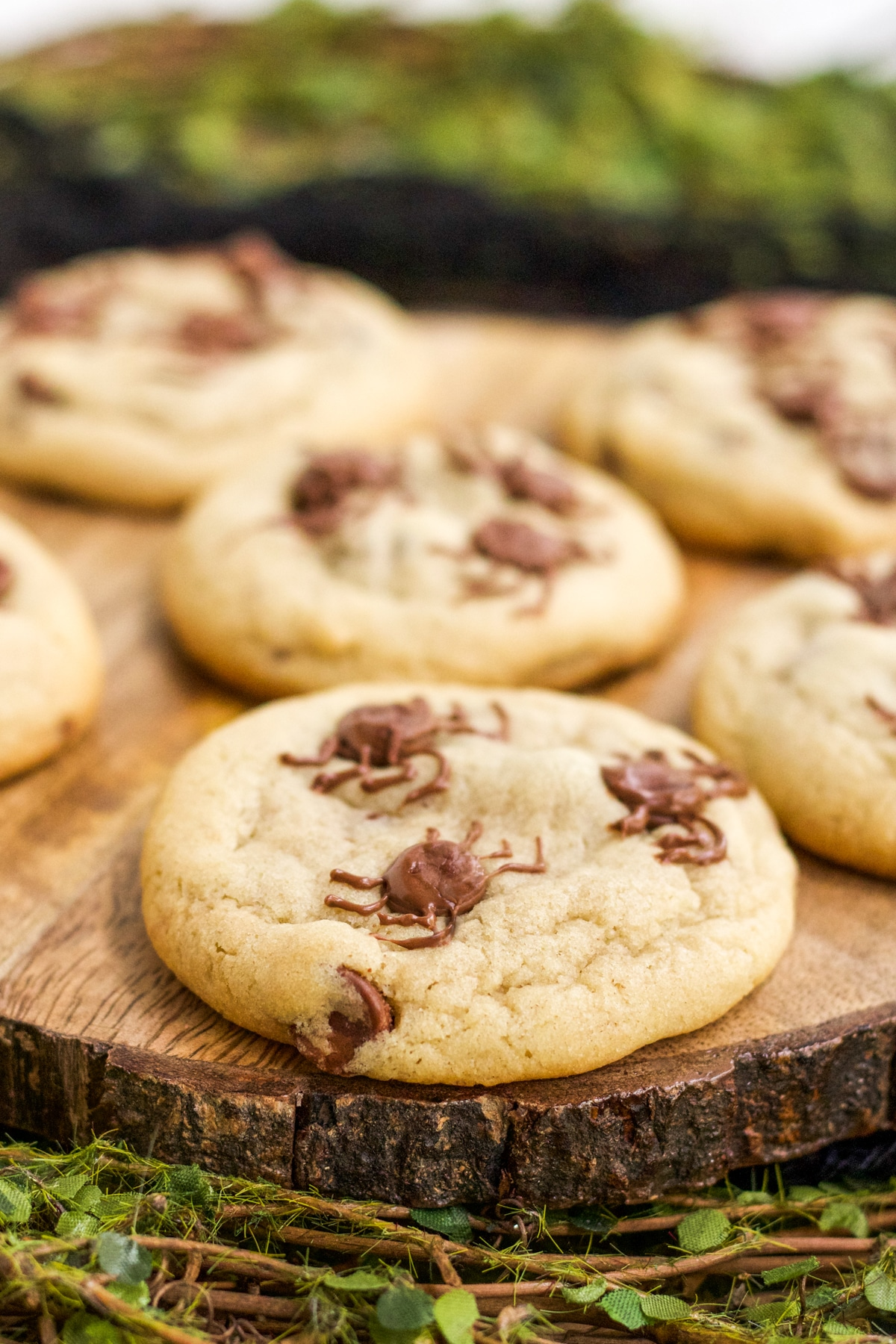 Chocolate Chip Spider Cookies Recipe served on a wooden platter.